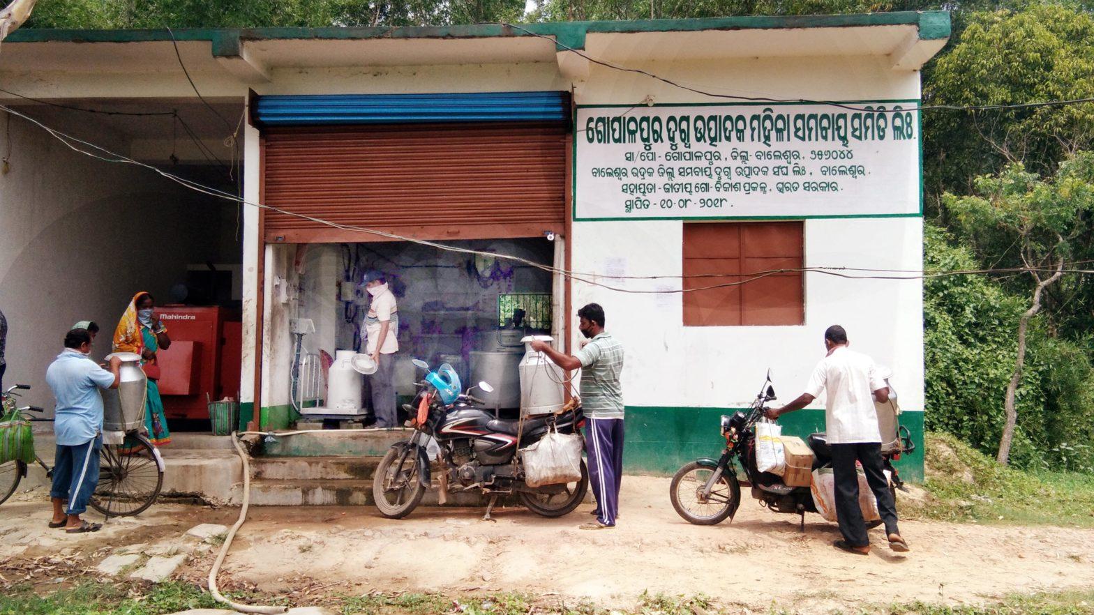 bahanaga- gopalpur milk samabaya samiti photo-2